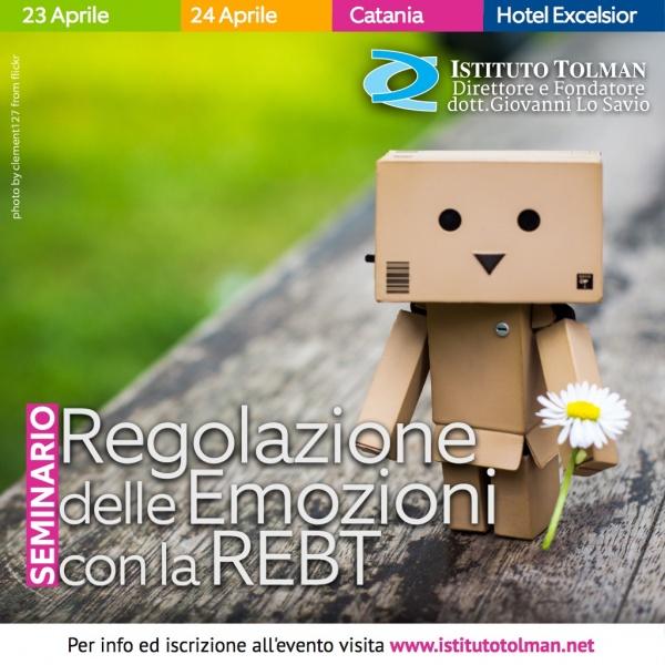 Seminario Regolazione delle Emozioni con la REBT Mario Di Pietro